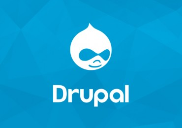 Drupal 8 decoupled book